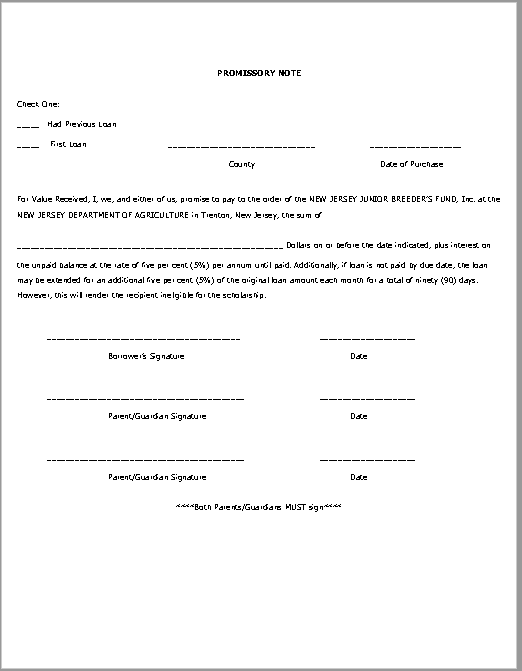 promissory note template 25