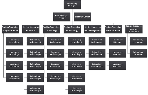Organogram Templates Word Autodietco - Organogram template