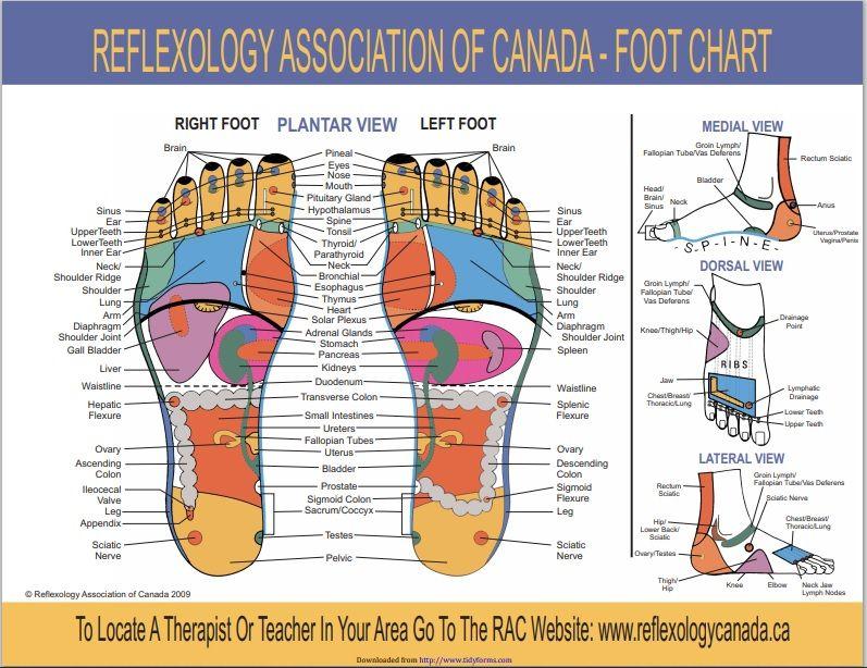 foot reflexology chart 001