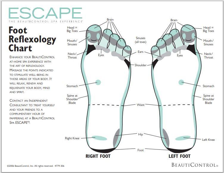 foot reflexology chart 004