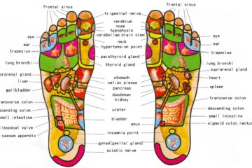 foot reflexology chart 07