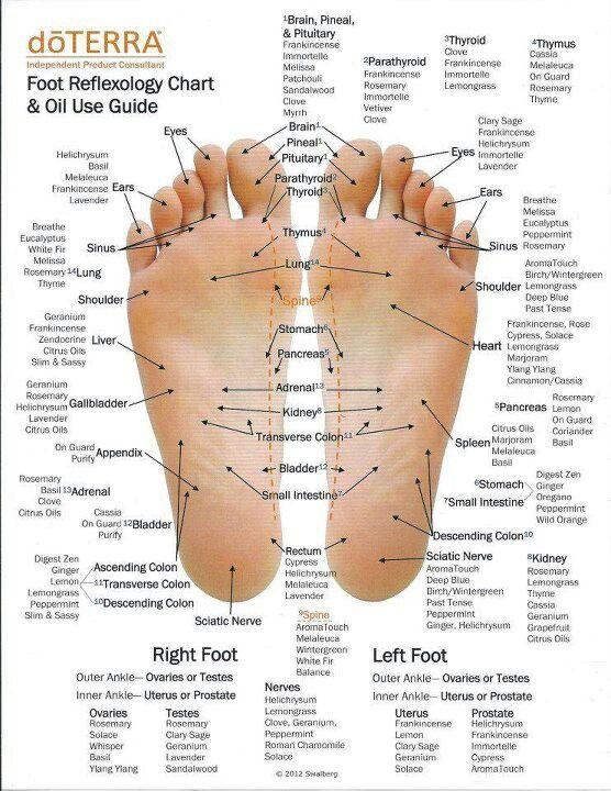 foot reflexology chart 11