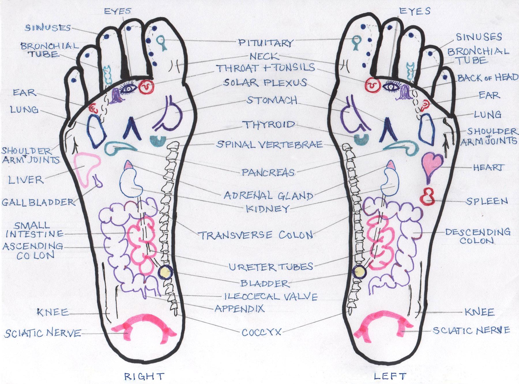 foot reflexology chart 20