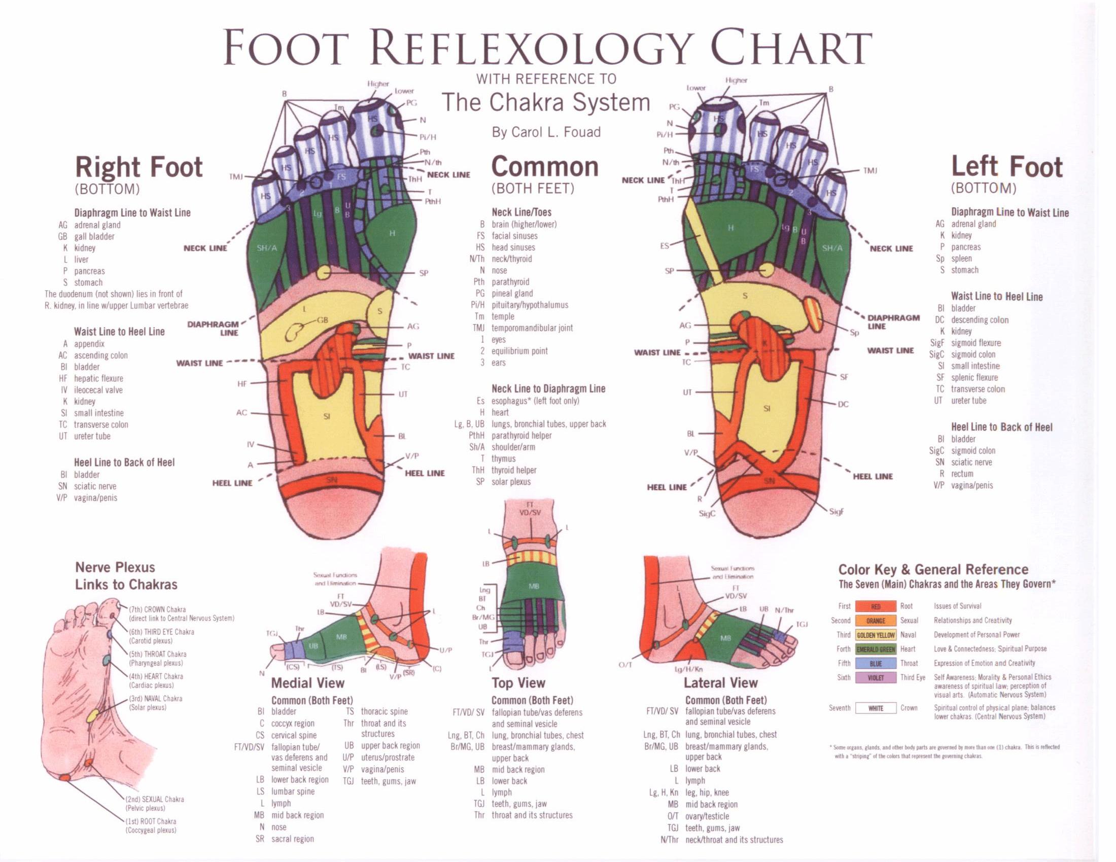 foot reflexology chart 22