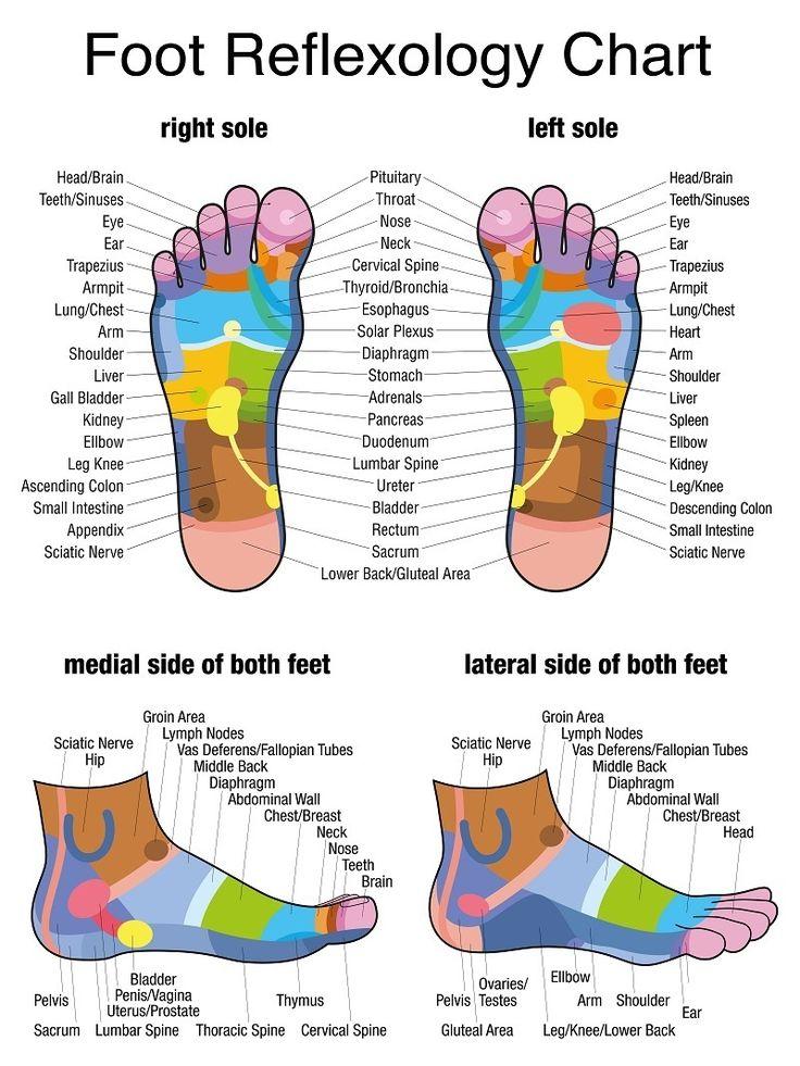 foot reflexology chart 23