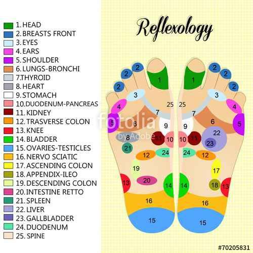 foot reflexology chart 26