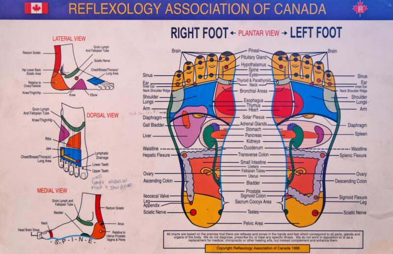 foot reflexology chart 28